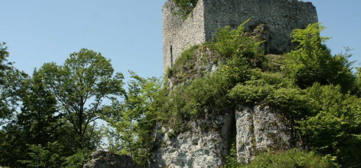 Orle Gniazda – ruiny zamku Smoleń