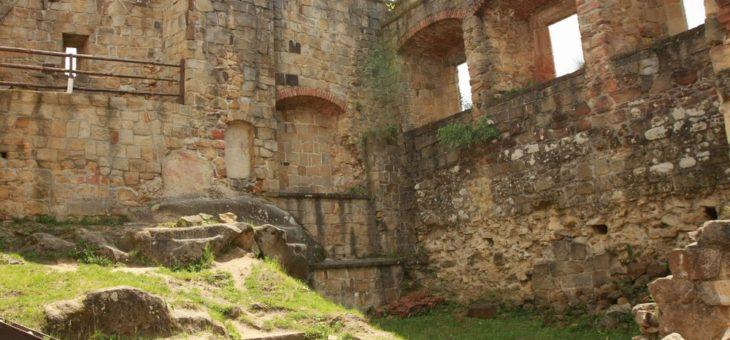 Zemsta Fredry, czyli wizyta na zamku rycerskim Kamieniec w Odrzykoniu