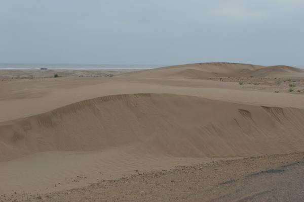Tarfay'a - pierwszy kontakt z pustynnym piaskiem Sahary.
