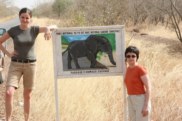 Jedyne afrykańskie słonie, które widzieliśmy.