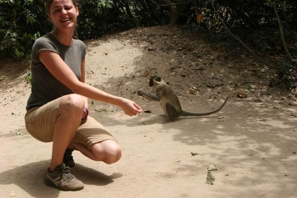 Rezerwat Abuko - z małpkami.