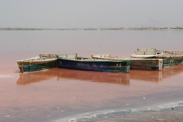 Senegal - Lac Rose (różowe jezioro).