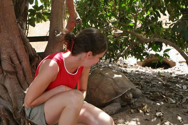 Senegal - żółwi rezerwat.